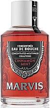 Parfémy, Parfumerie, kosmetika Ustní voda Skořice a máta - Marvis Concentrate Cinnamon Mint Mouthwash