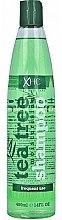 Parfémy, Parfumerie, kosmetika Šampon na vlasy - Xpel Marketing Ltd Tea Tree Shampoo