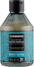 Parfémy, Parfumerie, kosmetika Šampon na obnovení vlasů - Black Professional Line Turquoise Hydra Complex Shampoo
