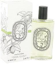 Parfémy, Parfumerie, kosmetika Diptyque L'eau des Hesperides - Toaletní voda