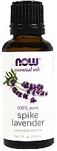 Parfémy, Parfumerie, kosmetika Levandulový esenciální olej - Now Foods Essential Oils 100% Pure Spike Lavender