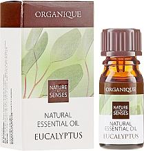 "Parfémy, Parfumerie, kosmetika Esenciální olej ""Eukalypt"" - Organique Natural Essential Oil Eucalyptus"