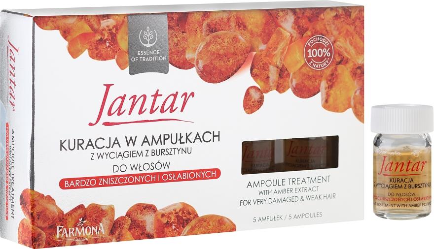 Prostředek pro velmi poškožené vlasy - Farmona Jantar Hair Treatment In Ampoules