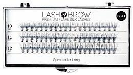 Parfémy, Parfumerie, kosmetika Umělé řasy - Lash Brown Premium Flare Silk Lashes Spectacular Long