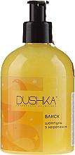Parfémy, Parfumerie, kosmetika Šampon Lesk s keratinem na suché a lámavé vlasy - Dushka