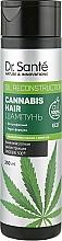 Parfémy, Parfumerie, kosmetika Vlasový šampon - Dr. Sante Cannabis Hair Shampoo
