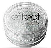 Parfémy, Parfumerie, kosmetika Pudr na nehty - Ronney Professional Holo Effect Nail Art Powder