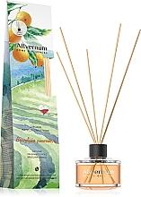 Parfémy, Parfumerie, kosmetika Aroma Diffuser Brazilský pomeranč s tyčinkami - Allverne Home&Essences Diffuser