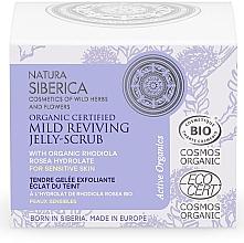 Parfémy, Parfumerie, kosmetika Jemný regenerační peeling želé na obličej - Natura Siberica Organic Certified Mild Reviving Jelly-Scrub