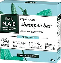Parfémy, Parfumerie, kosmetika Tuhý šampon pro mastné vlasy - N.A.E. Equilibrio Purifying Shampoo Bar