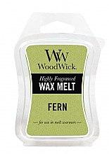 Parfémy, Parfumerie, kosmetika Aromatický vosk - WoodWick Wax Melt Fern