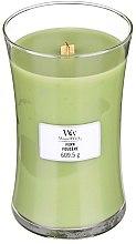 Parfémy, Parfumerie, kosmetika Vonná svíčka ve sklenici - WoodWick Hourglass Candle Fern