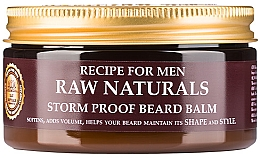Parfémy, Parfumerie, kosmetika Balzám na bradu - Recipe For Men RAW Naturals Storm Proof Beard Balm