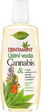 Parfémy, Parfumerie, kosmetika Ústní voda - Bione Cosmetics Dentamint Mouthwash Cannabis