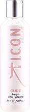 Parfémy, Parfumerie, kosmetika Obnovující šampon na vlasy - I.C.O.N. Cure Recovery Shampoo