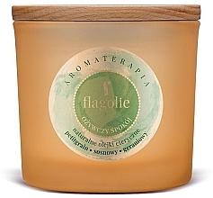 Parfémy, Parfumerie, kosmetika Vonná svíčka v sklenici Osvěžující - Flagolie Fragranced Candle Refreshing Peace