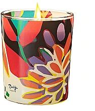 Parfémy, Parfumerie, kosmetika Vonná svíčka - Baija Vertige Solaire Scented Candle