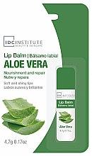 Parfémy, Parfumerie, kosmetika Balzám na rty Aloe Vera - IDC Institute Lip Balm Aloe Vera