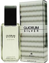 Antonio Puig Quorum Silver - Toaletní voda — foto N2