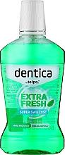 Parfémy, Parfumerie, kosmetika Ustní voda - Dentica Dental Protection Mint Fresh