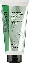 Parfémy, Parfumerie, kosmetika Šampon pro objem vlasů s extraktem z plodů acai - Brelil Numero Volumising Shampoo