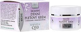 Parfémy, Parfumerie, kosmetika Denní krém na obličej - Bione Cosmetics Exclusive Organic Day Facial Cream With Q10