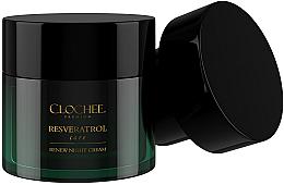 Parfémy, Parfumerie, kosmetika Noční pleťový krém, náhradní náplň - Clochee Premium Renew Night Cream