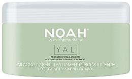 Parfémy, Parfumerie, kosmetika Regenerační vlasová maska s kyselinou hyaluronovou - Noah