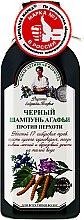 Parfémy, Parfumerie, kosmetika Černý šampon Agafya proti lupům - Recepty babičky Agafyy