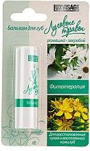 Parfémy, Parfumerie, kosmetika Balzám na rty Luční trávy, heřmánek-třezalka tečkovaná - Luxvisage