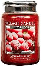 Parfémy, Parfumerie, kosmetika Vonná svíčka ve skle - Village Candle Cypress & Iced Currant Glass Jar