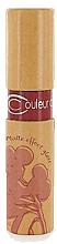 Parfémy, Parfumerie, kosmetika Matný lesk na rty - Couleur Caramel Matte Effect Lip Gloss