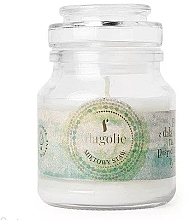 Parfémy, Parfumerie, kosmetika Vonná svíčka v nádobě Mátový rybník - Flagolie Scented Candle Boho Mint Pond
