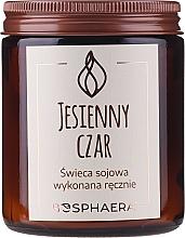 Parfémy, Parfumerie, kosmetika Aromatická svíčka Autumn Charm - Bosphaera Autumn Charm Candle
