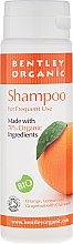 Parfémy, Parfumerie, kosmetika Šampon pro každodenní použití - Bentley Organic Shampoo For Frequent Use