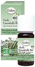 Parfémy, Parfumerie, kosmetika Organický esenciální olej Eukalyptus radiata - Galeo Organic Essential Oil Eucalyptus Radiata