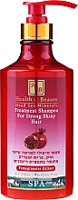 Parfémy, Parfumerie, kosmetika Posilující šampon na vlasy s extraktem z granatového jablka - Health And Beauty Pomegranates Extract Shampoo for Strong Shiny Hair