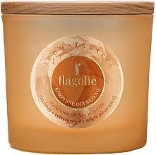 Parfémy, Parfumerie, kosmetika Aromatická svíčka ve skle Osvěžující skořice - Flagolie Fragranced Candle Cinnamon Refreshing