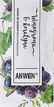 Parfémy, Parfumerie, kosmetika Maska pro středně porézní vlasy - Anwen Medium-Porous Hair Mask Grapes and Keratin (vzorek)