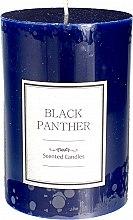 Parfémy, Parfumerie, kosmetika Vonná svíčka - Artman Black Panther Candle