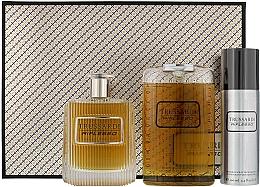Parfémy, Parfumerie, kosmetika Trussardi Riflesso Man Set - Sada (edt/100ml + sh/g/200ml + deo/100)