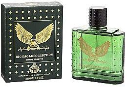 Parfémy, Parfumerie, kosmetika Real Time Big Eagle Collection Green - Toaletní voda
