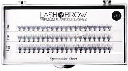 Parfémy, Parfumerie, kosmetika Umělé řasy - Lash Brown Premium Flare Silk Lashes Spectacular Short