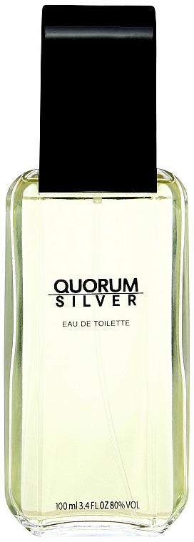 Antonio Puig Quorum Silver - Toaletní voda — foto N1