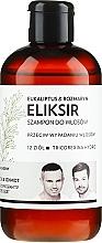 Parfémy, Parfumerie, kosmetika Vlasový šampon-elixír Eukalypt a rozmarýn - WS Academy Eukaliptus & Rozmaryn Elixir Wash