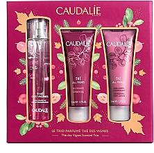 Parfémy, Parfumerie, kosmetika Sada - Caudalie The Des Vignes Scented Trio (edp/50ml + sh/gel/50ml + b/lot/50ml)
