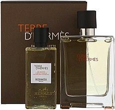 Parfémy, Parfumerie, kosmetika Hermes Terre dHermes - Sada (edt/100ml + sh/g/80ml)