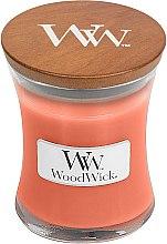 Parfémy, Parfumerie, kosmetika Vonná svíčka ve sklenici - WoodWick Tamarind & Stonefruit Candle