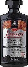 Parfémy, Parfumerie, kosmetika Detoxikační šampon s aktivním uhlím - Farmona Jantar Detoxifying Shampoo With Active Charcoal