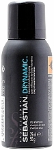 Suchý šampon - Sebastian Professional Dry Shampoo Drynamic+ — foto N2